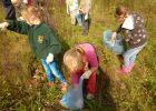 /uploads/galleries/736b2617c4f5f5d56b74a9221f40204e.jpg